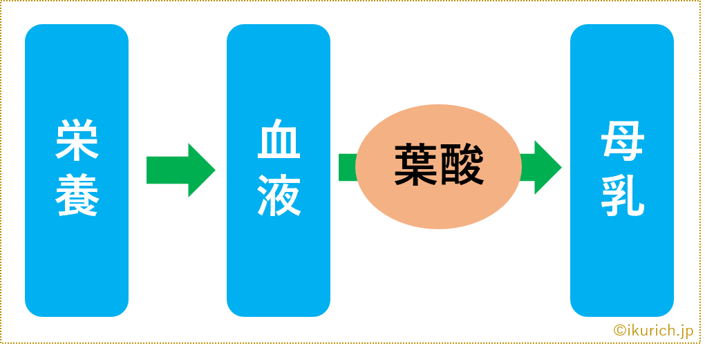 img.bonyu-flow